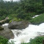 Cascadas en Munnar