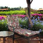 Relaxing garden view lanai surrounded by colorful blooms