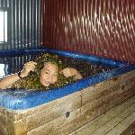 Enjoy fresh seaweed in the seaweed bath tub
