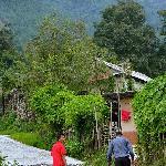 Walk Uphill to Shivapuri Cottage