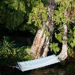 Hammock over lake