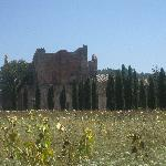 View in front of San Galgano
