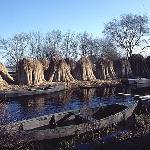 Parc de la Brière