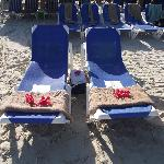 Reserved Loungers With Cooler of Beer and Water, We Chose This Location Away From Palapa Shade