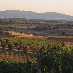 Photo of Agriturismo Bella Vista