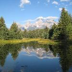Jackson Hole Eco Tour Adventures Foto