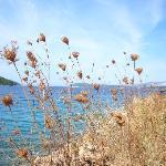 Beautiful Part of Hvar Island - 2