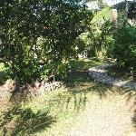 Vila Hibiscus gardens