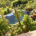 Looking down on the pool
