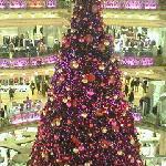 クリスマスツリーが斜めになるように撮影すると格好良いのですが、これは真横からの写真です(汗)