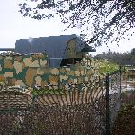 戦車 (35490969)