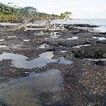 Blackrock beach