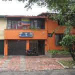 Foto de Palm Tree Hostal Medellin