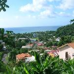 view from the hotel garden boardwalk