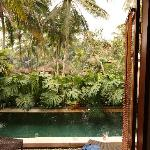 Private pool at Lily Villa