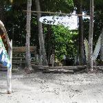 C&C surf school next door