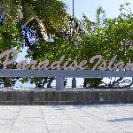 paradise island male