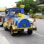 The cute little train