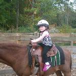 pony rides at Dubois farms