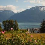 View of Lynn Canal from porch