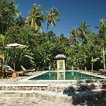 Cili Emas Oceanside Resort Tejakula, Bali - Swimmingpool
