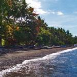 Cili Emas Oceanside Resort Tejakula, Bali - Strand - Beach