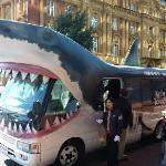 The shark bus