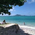 Utsikt från strandkanten