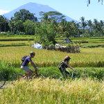 Bali Eco Cycling