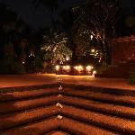Night View Gardens
