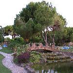 Falesia Hotel garden