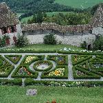 Gorgeous flower garden