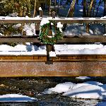 Along the snow-shoe route