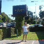 The Brentwood Inn and lovely Brentwood in LA