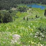 Lakes and wildflowers