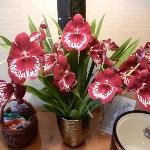 Beautiful live orchids - nice touch!