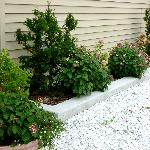 Flower bed in back