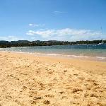 Le spiagge che ci venivano indicate per andare con i cani in agosto!!! Spettacolari.