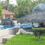 Pool & Palapa bar
