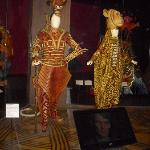 Lion's King Costumes