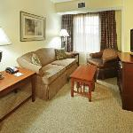 Our Spacious 1 Bedroom Suite