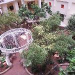 """Indoor """"Courtyard"""""""