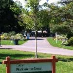 READ:  Please!  Walk on the Grass.  Gotta love Canada!