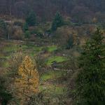 Zig Zag route downhill to Alte Brucke