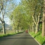 PisaからLuccaまでの道
