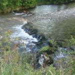 stream running through site