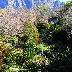 view of hotel gardens and Table Mountain