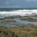 Garden Route to Cape Town