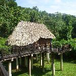 Treehouse Cabana