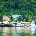5 Vacation Villas Over Golfito Marinas